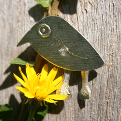 Noggin flower